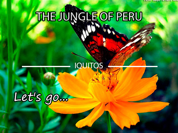 Iquitos travel trips